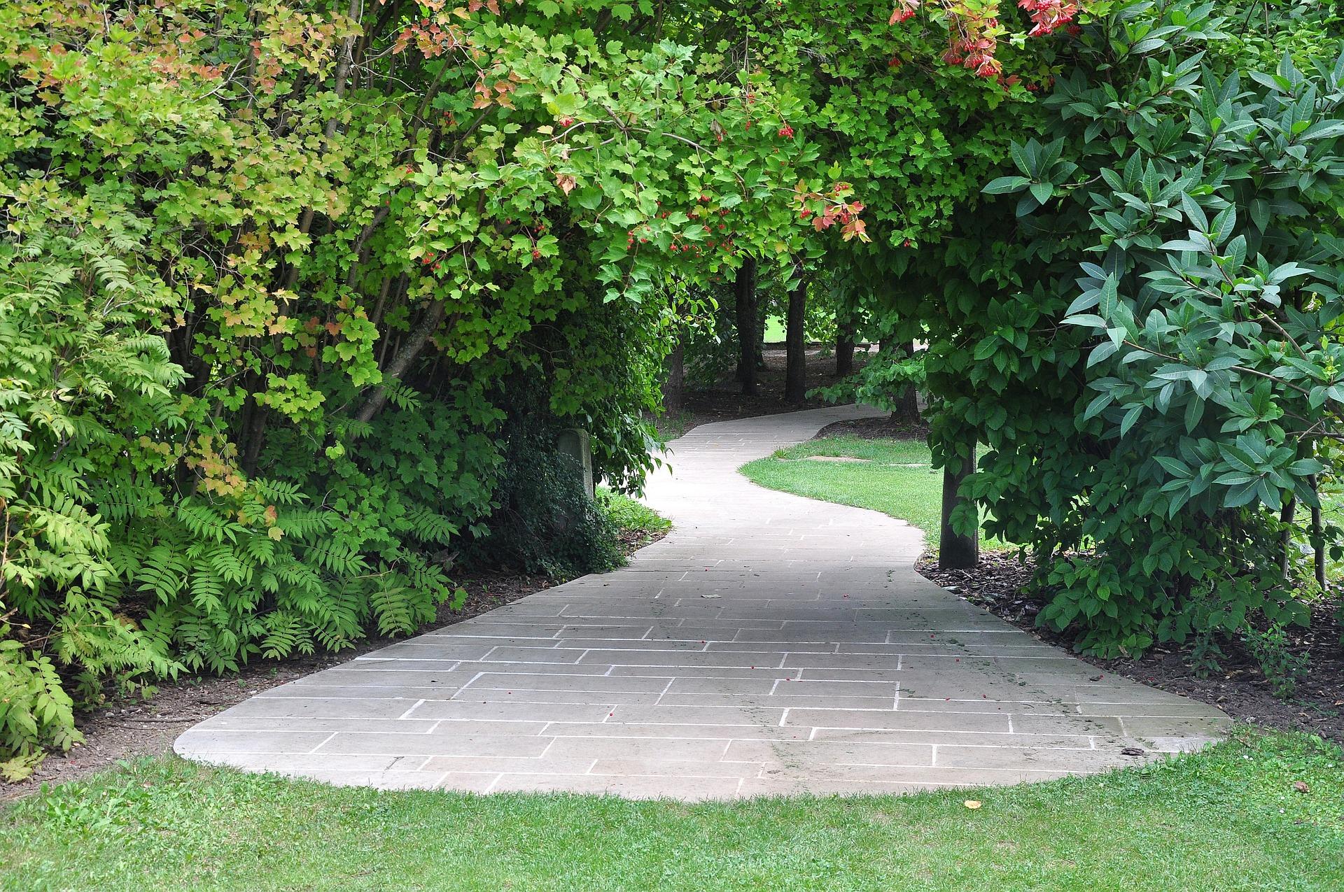 garden-930815_1920